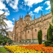 Beautiful view of Cathedral of Salamanca, Castilla y Leon region, Spain — Stock Photo #79028460