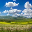 Piano Grande summer landscape, Umbria, Italy — Stock Photo #79028740
