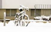 Snow and Bike — Stok fotoğraf