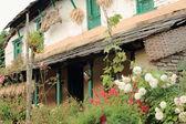 Traditional gurung homestead. Ghandruk-Nepal. 0619 — Stock Photo