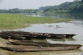 Wooden rowboats on Rapti river. Chitwan-Nepal. 0880 — Stock Photo