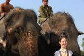 Indian elephant-tourist after safari. Chitwan-Nepal. 0888 — Stock Photo
