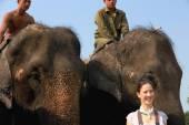 Indian elephant-tourist after safari. Chitwan-Nepal. 0889 — Stock Photo
