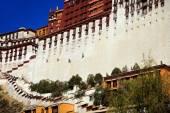 Whitewashing the walls of the Potala palace. Lhasa-Tibet. 1373 — Stock Photo