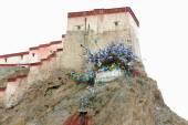 Dzong-fort of Gyantse-Tibet. 1599 — Stock Photo