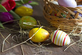 Easter eggs and tulips on wooden board — Stock Photo