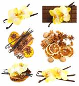 Vanilla pods with orchid flower, cinnamon sticks, anise stars — Zdjęcie stockowe
