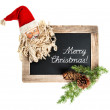 Christmas decoration Santa Claus with blackboard — Stock Photo #56538029