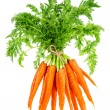 Fresh carrots with green leaves. Vegetable. Food — Stock Photo #58979779