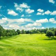 Golf field and blue cloudy sky. Beautiful landscape with green g — Stock Photo #62874401