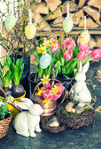 Easter bunny and eggs decoration. Spring flowers tulips, narciss — Stock Photo