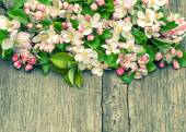Apple tree flowers on wooden background — Stock Photo