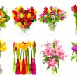 Bouquets of colorful flowers — Stock Photo #67841459