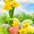 Easter eggs decoration and daffodils flowers — Stock Photo #67842109