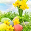 Easter eggs decoration and daffodils flowers — Stock Photo #67842111