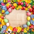 Easter decoration with spring flowers — Stock Photo #67848681