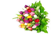 Bouquet of fresh multicolor tulips. Spring flowers — Stock Photo