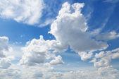 Cumulus clouds in the blue sky — Stock Photo