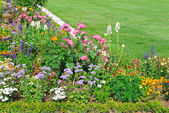 Flower bed and green lawn — Stock Photo