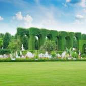 Lawn and hedge in a summer park — Stock Photo