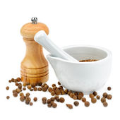 Kitchen equipment for grinding spices isolated on a white backgr — Stock Photo