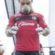 Tijuana mascot — Stock Photo #54203817