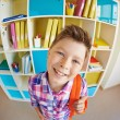 Handsome schoolboy with schoolbag — Stock Photo #53801855