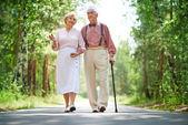 Senior couple walking in park — Stock Photo