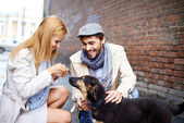 Happy young couple feeding dog — Stock Photo