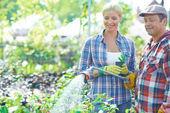 Tuinman drenken planten — Stockfoto