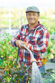 Mature man watering plants — Foto Stock