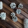 Decorative silver cones and conifer — Stock Photo #55487535