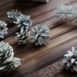 Decorative silver cones and conifer — Stock Photo #55487537