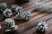 Decorative silver cones and conifer — Stock Photo
