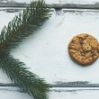 Biscuit and conifer — Stock Photo #58584455