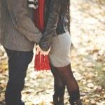 Couple kissing in autumn park — Stock Photo #58585797