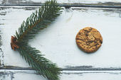 Biscuit and conifer — Stock Photo