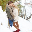 Couple having date in winter park — Foto Stock #62859493