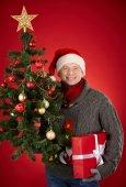 Man with giftbox and Christmas tree — Stock Photo