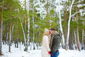 Sweethearts   in winter forest — Stockfoto