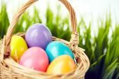 Barevné velikonoční vejce v košíku — Stock fotografie
