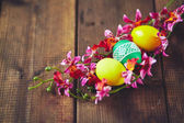 Easter eggs with orchid flowers — Foto de Stock