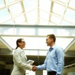 Business people shaking hands — Stock Photo #72148055