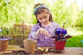 Girl replanting African violets — Stock Photo