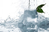 Ice, leaf and splashes of water — Stock Photo