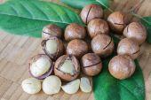 Macadamia on wood table. — Stock Photo