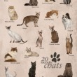 Cat breeds poster in French — Stock Photo #53298595