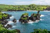 Vegetation on the coast in Maui, Hawaii — Stock Photo
