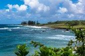 The coast of Maui, Hawaii — Zdjęcie stockowe