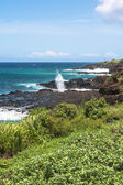 Koloa coast, Kauai — Stock Photo